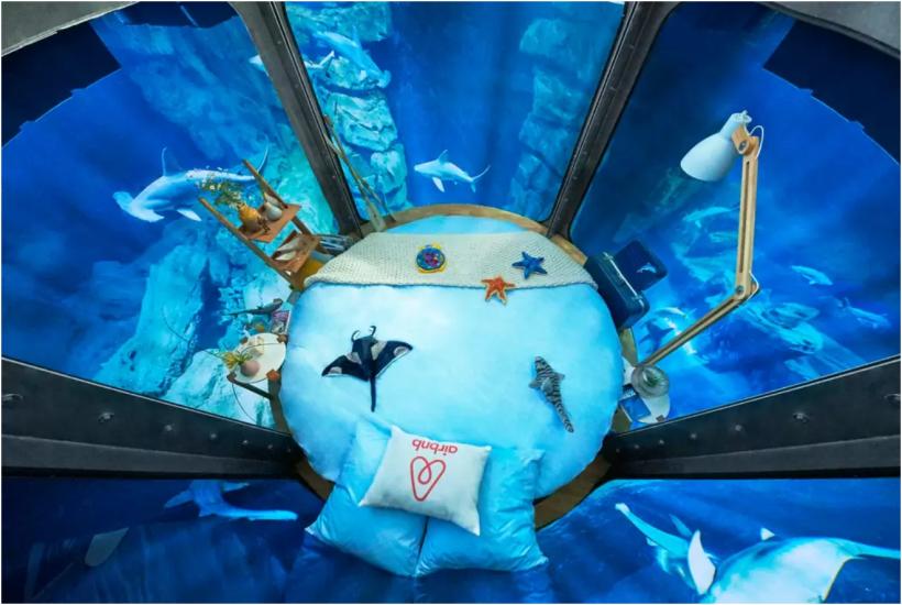 L'Aquarium de Paris shark tank