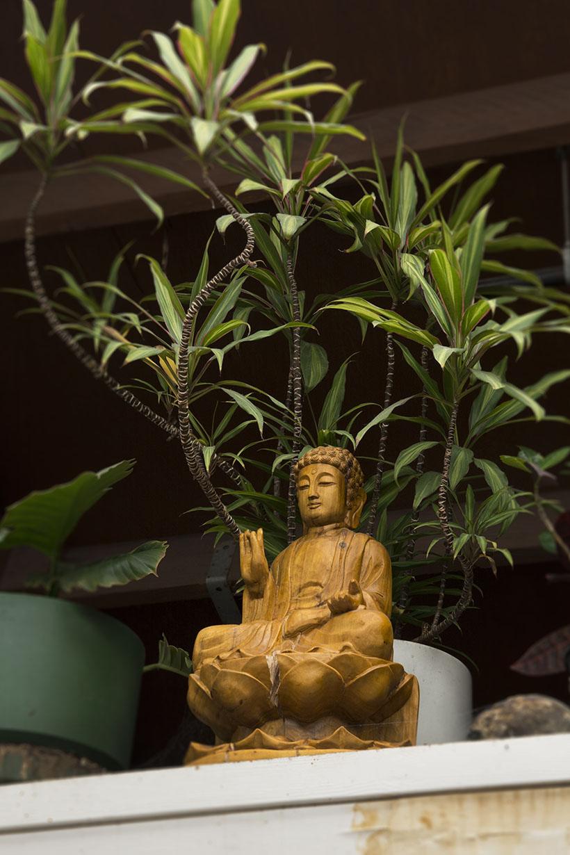 Martin's Buddha