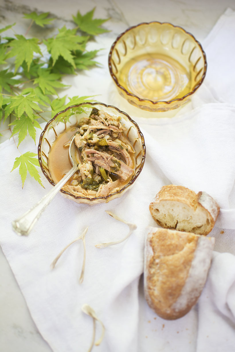 Turkey Soup Close-Up